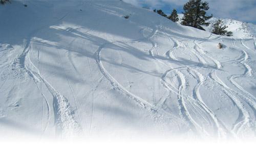 Powder_Mountain_tracks.jpg