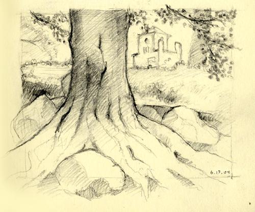 kon_prspct_tree.jpg