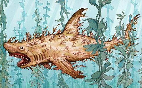 plant-shark.jpg