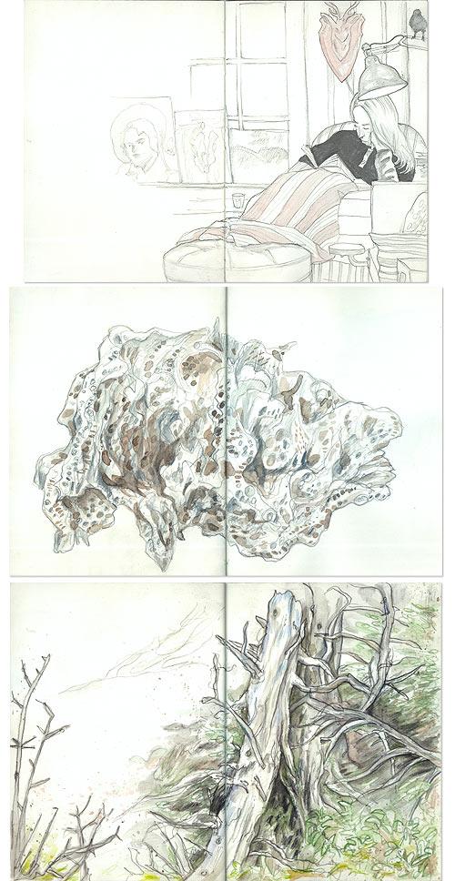 maine06-sketches.jpg